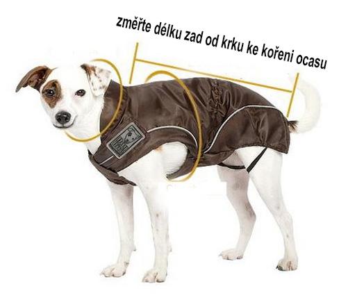 jak změřit psa